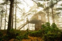 Wilderness-Tower-mysterious-fog