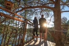 plattform island hut treetop Fiddan