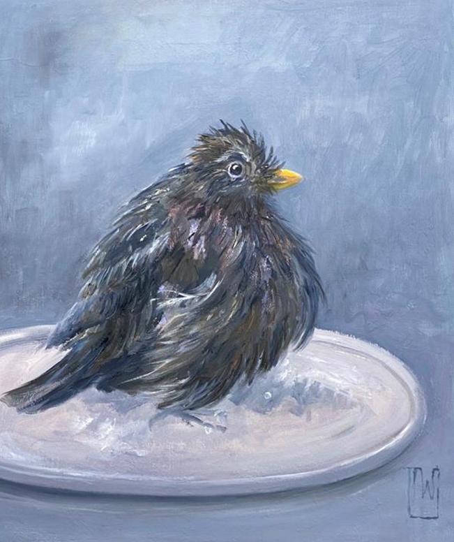 birdies #4 -50x60 - olie op doek