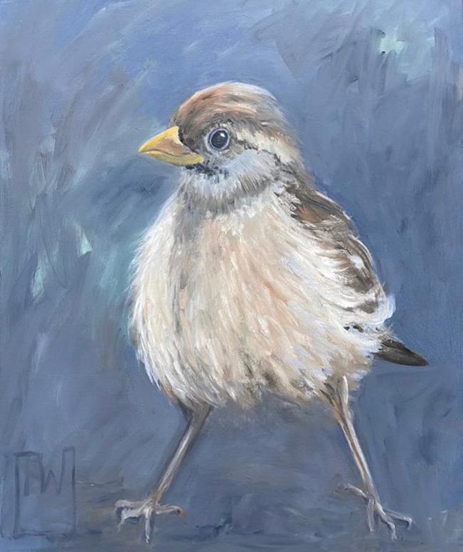 birdies #6 - 50x60 - olie op doek