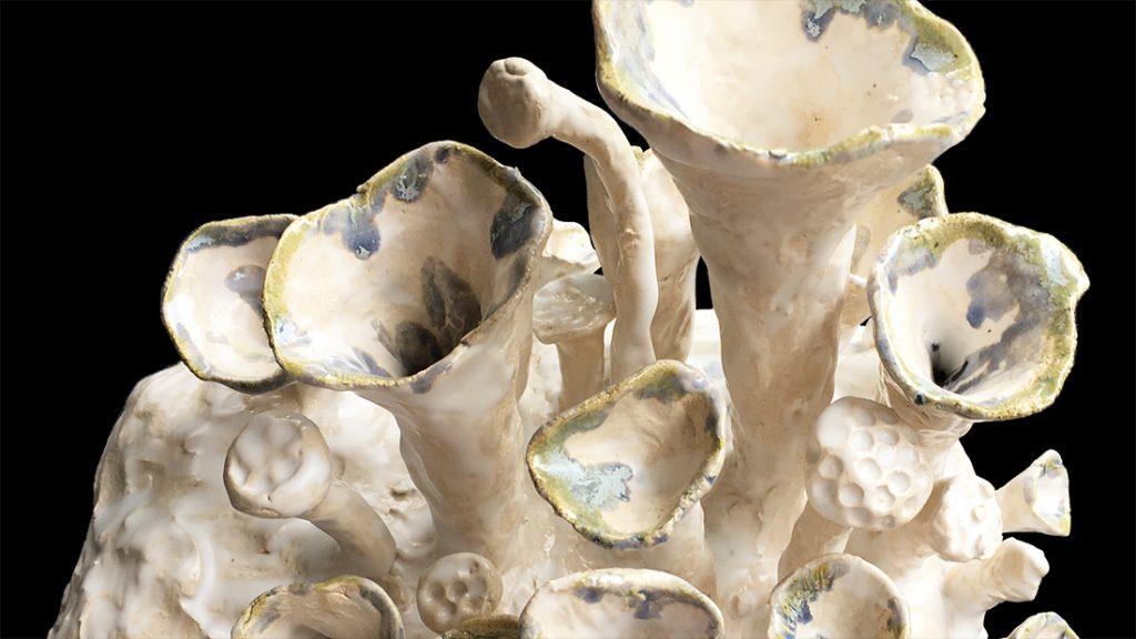 Bekermos op Ceramics Trudi Willenborg Uitgelichte afbeelding