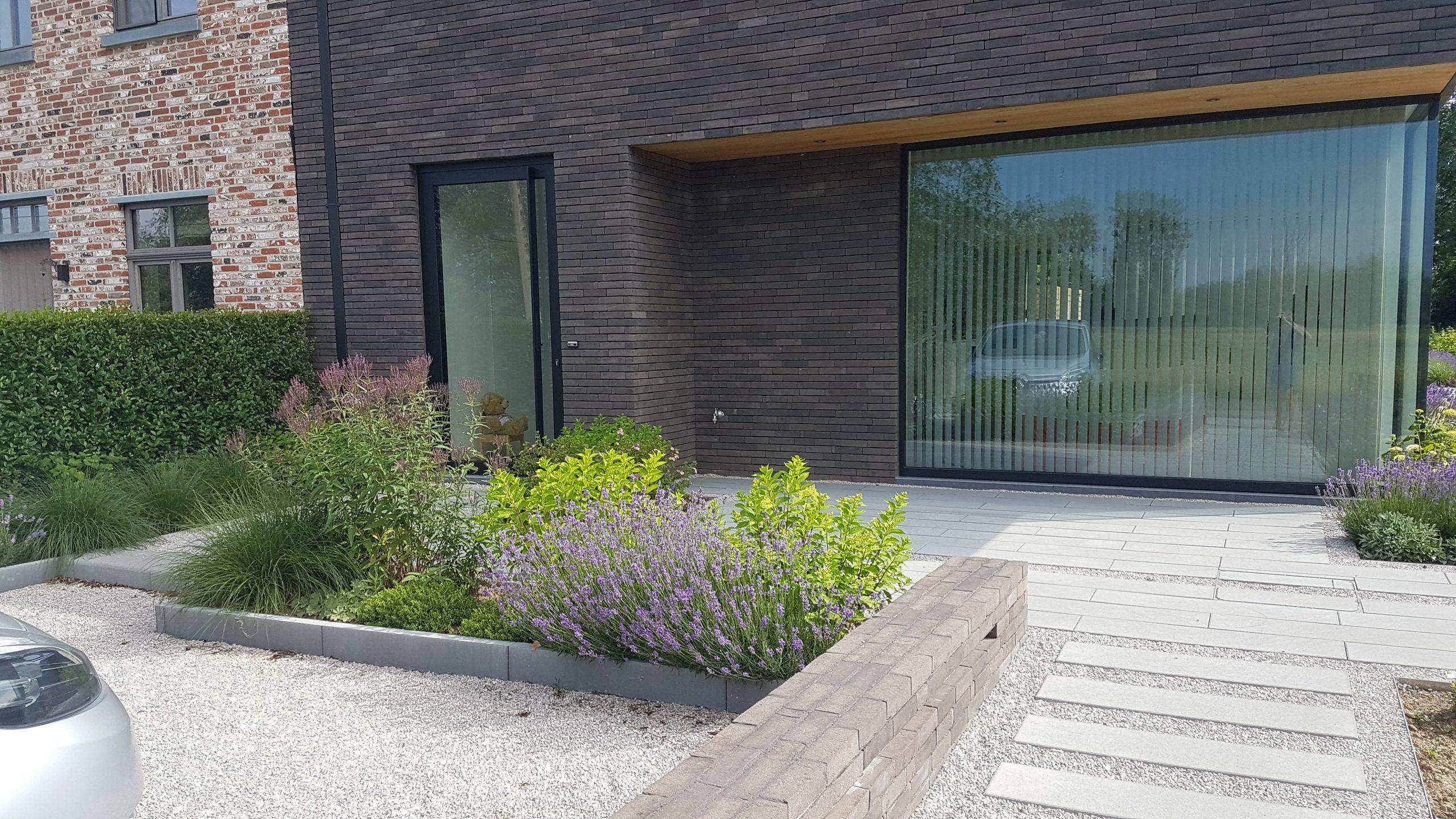 moderne tuin | GREMBERGEN