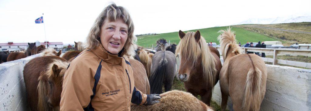 Dorte til hestesamling på nordlandet.
