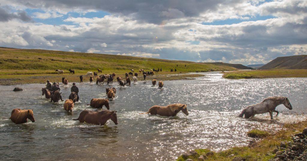 Krydser en flod på Island 2016.