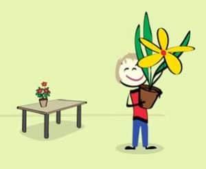 bloms til skolen
