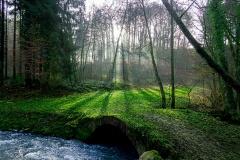 Angerbach_6_26012020