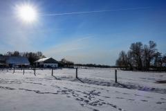 winter2021BA-7-von-8