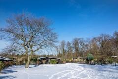 winter2021BA-8-von-8