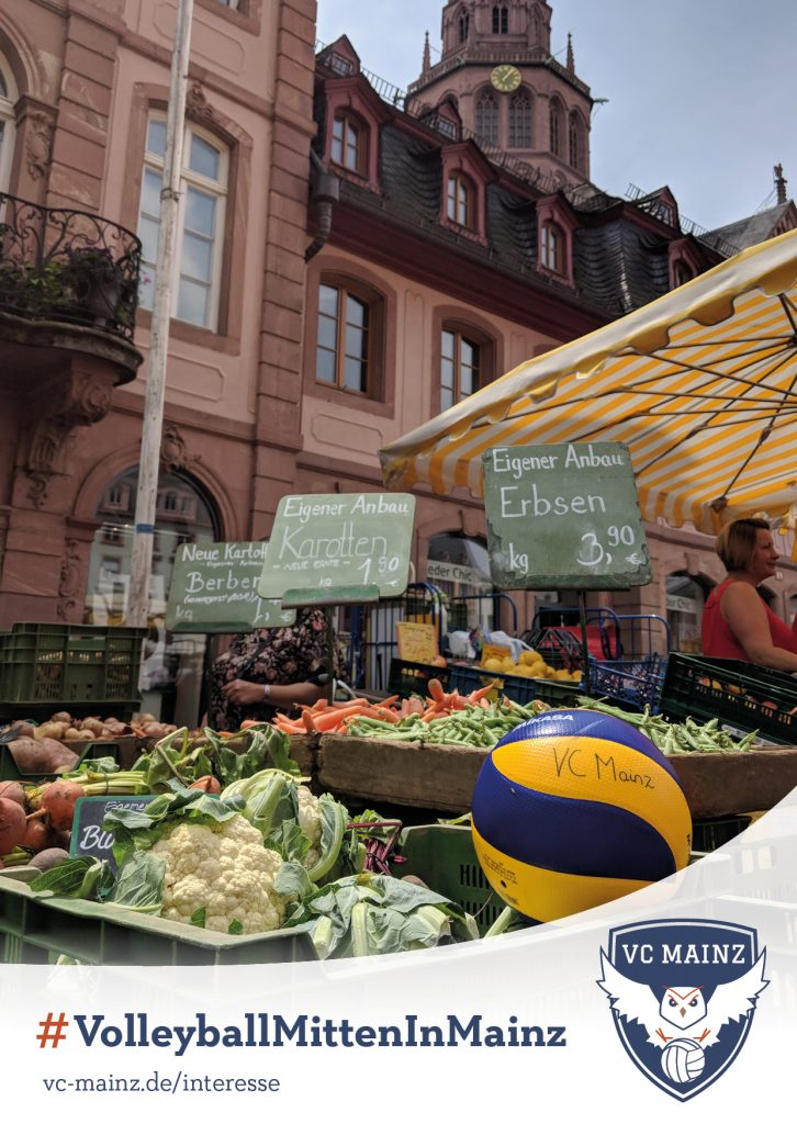 Volleyball mitten in Mainz