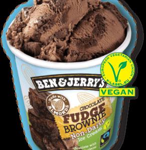 Ben & Jerry's Non-Dairy Fudge Brownie