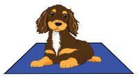 Clicker Training the Hold –  Building Duration | Waggawuffins Canine Communities