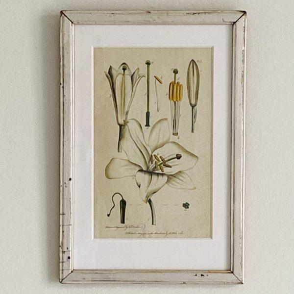 Blomstertryk i gammel sølvramme fra Villaverte