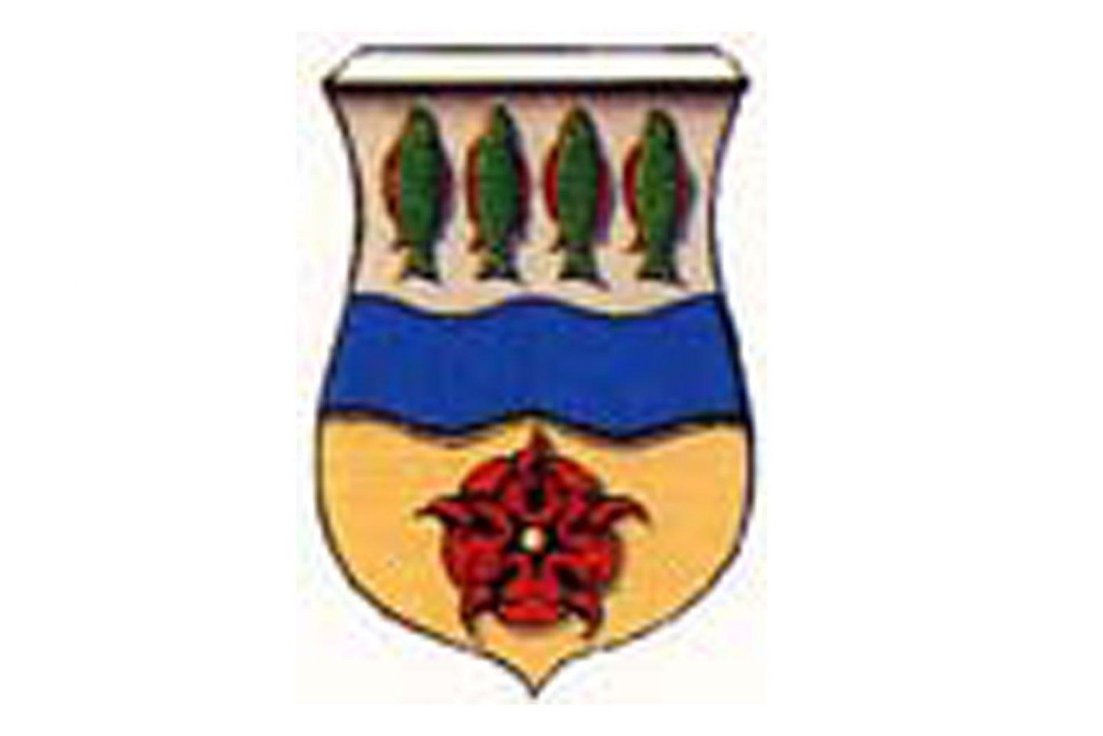 Het wapen van Visvliet