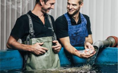 Avelsprogram hos Gårdsfisk säkrar svensk fiskuppfödning
