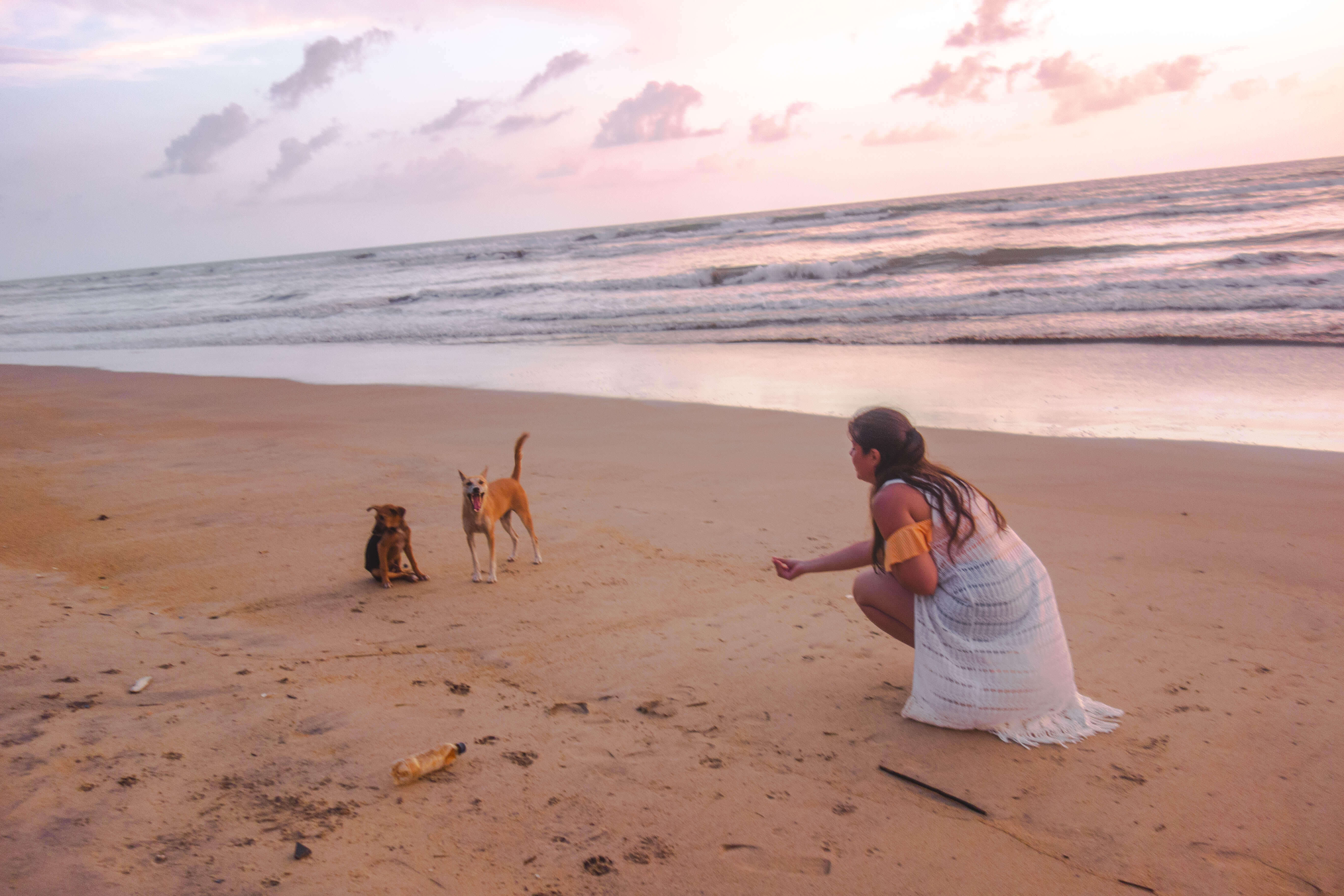Wadduwa dirty beach