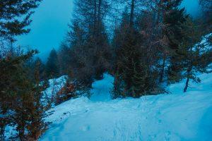 wandeltocht in La Joue du Loup