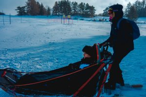 Things to do Le Dévoluy dog sledge