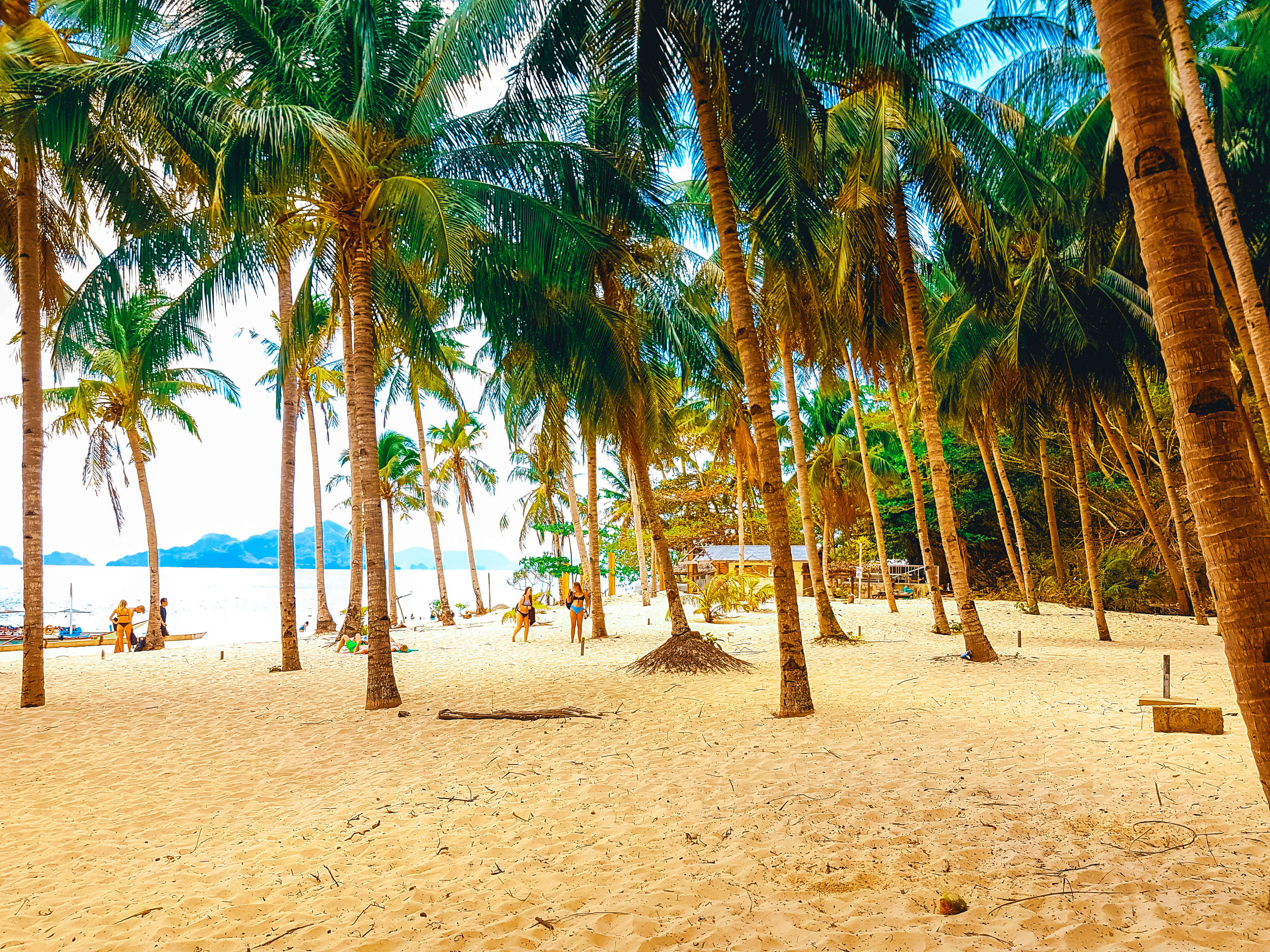 7 comando beach