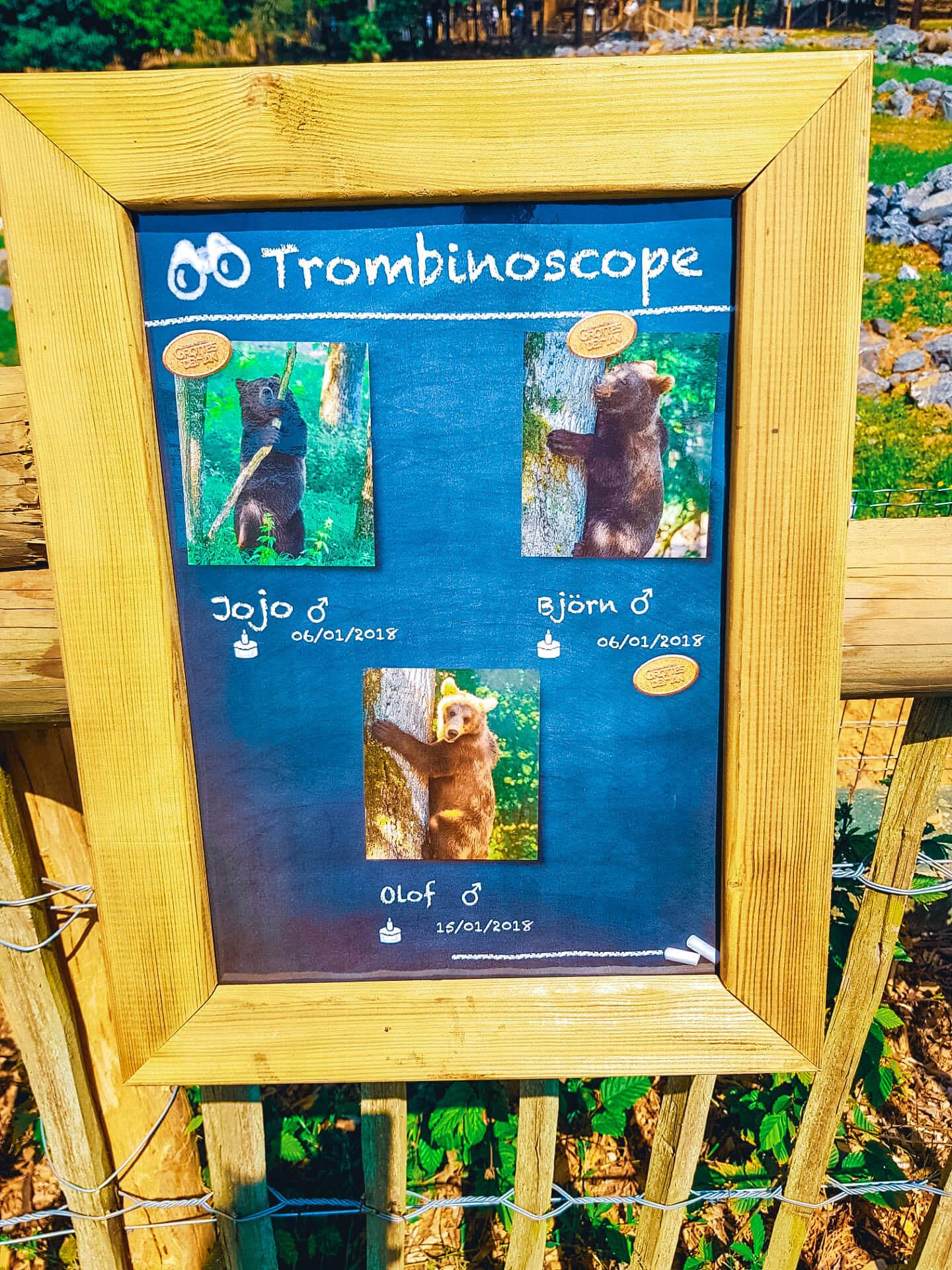 Welkom in het berenbos jojo bjorn olof