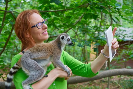 A tourist takes a selfie with a ring-tailed lemur.