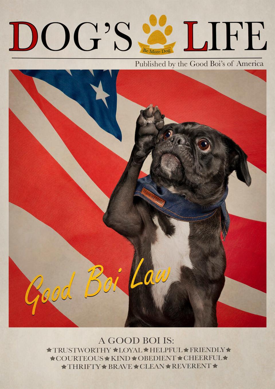 Patriotic Dog in a magazine's cover