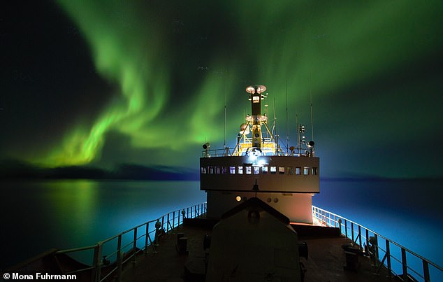 'We'll be working with the Greenland government and fishing industry to ensure this fragile, complex and beautiful habitat is protected,' said paper author and geographer Stephen Long of University College London. Pictured, the research vessel Paamiut below the Northern lights