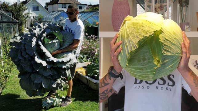 Shaun with his giant veg