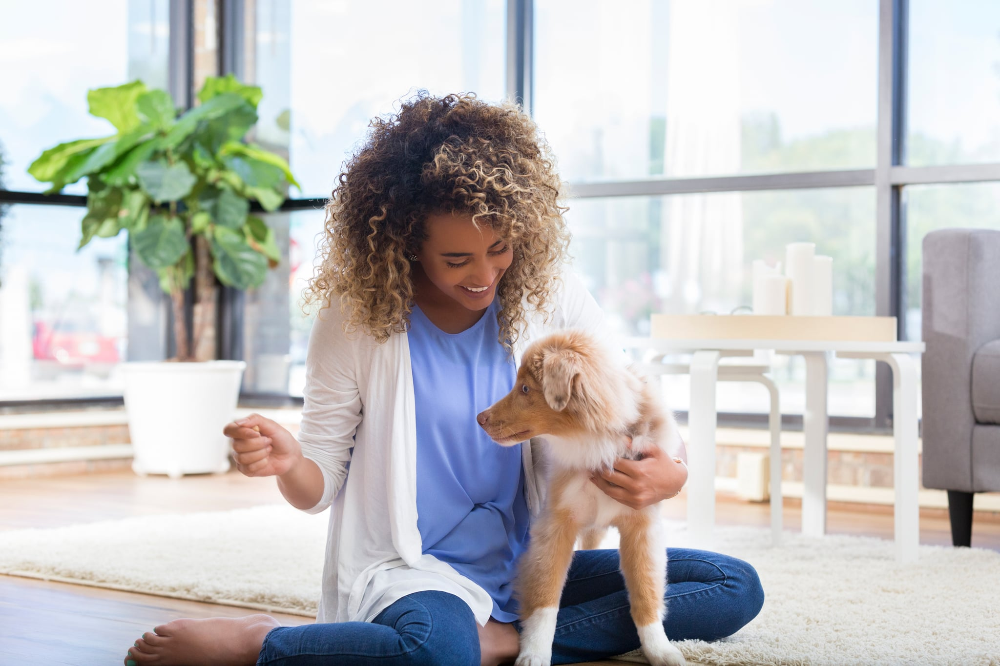 Happy young woman trains adorable puppy. She is sitting in her living room.