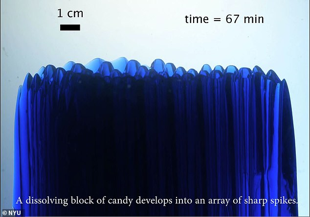 Researchers put a solid block of rock candy upright in a tank of water. Instead of melting away all over evenly, the candy gradually sharpened into a sugary spikes