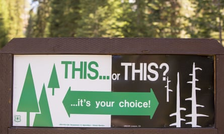 VARIOUSMandatory Credit: Photo by Global Warming Images/REX Shutterstock (4446676a) A wildfire sign in Sequoia National Park, California, USA. VARIOUS