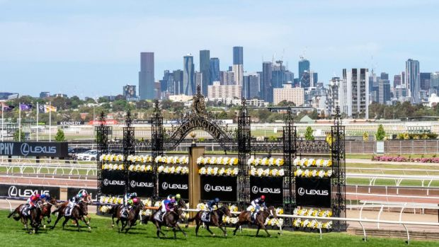 Twilight Payment leads them home in the Melbourne Cup. Photograph: Vince Caligiuri/Getty