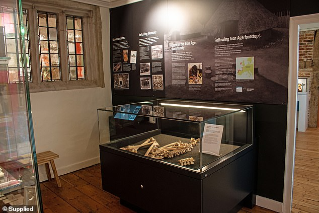 The Iron Age TB skeleton displayed in the new Life and Death Gallery at the Museum of East Dorset in Wimborne, Dorset. where it is on permanent display