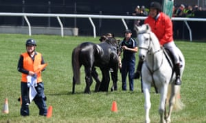 Injured horse on race track