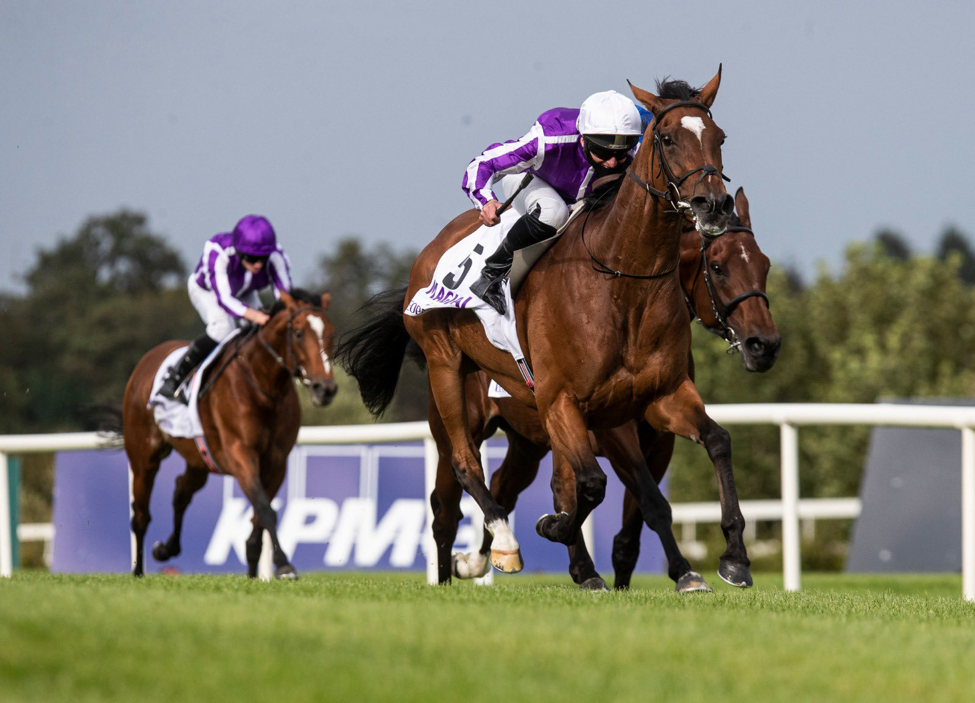 Best bet on breeders cup cryptocurrency mining attacks