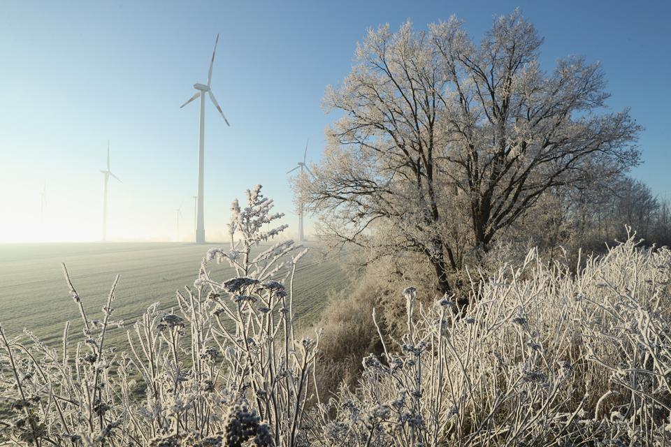 Overnight Frost Creates Winter Landscape