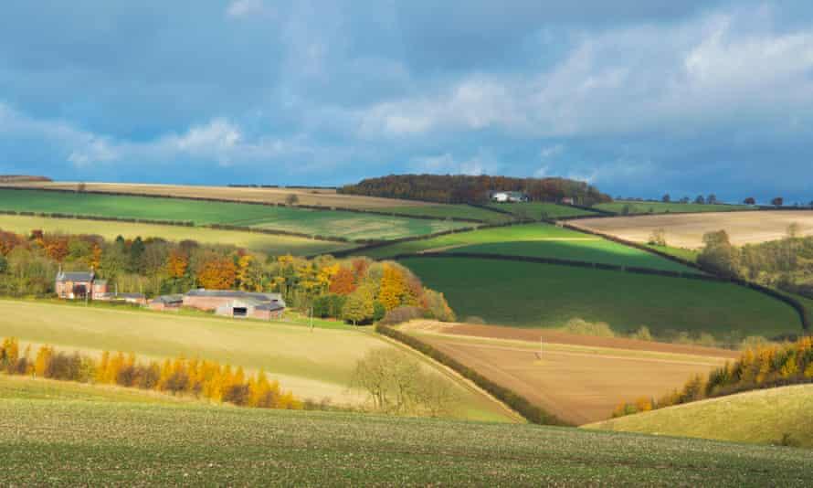 Landscape, farming, pastoral, near Fimber, Sledmere, East; Yorkshire, Wolds, England. Image shot 2015. Exact date unknown.F4KP42 Landscape, farming, pastoral, near Fimber, Sledmere, East; Yorkshire, Wolds, England. Image shot 2015. Exact date unknown.