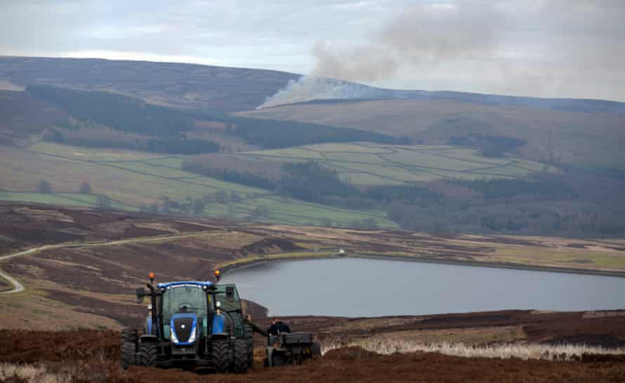Gamekeepers on Barden Moor in the Yorkshire Dales take a break between burns; in the far distance more Moorland Burning take place.