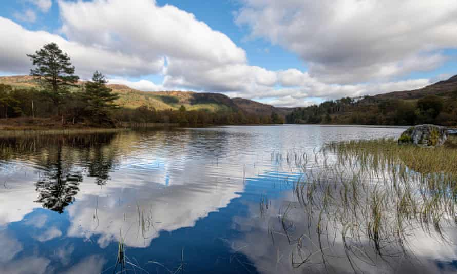 Loch Trool, Galloway Forest Park on a bright autumn day