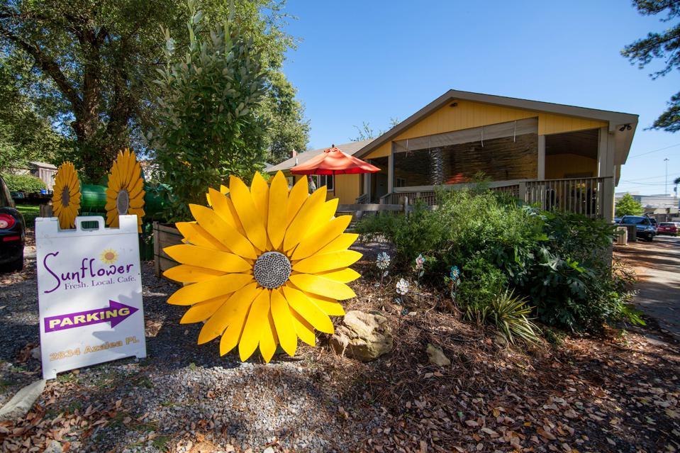 Sunflower Cafe