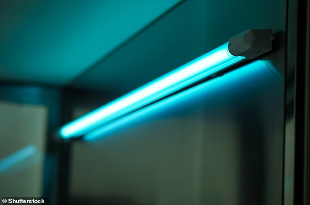 Which? is urging shoppers to think twice before buying UV light devices that claim to kill viruses and bacteria, as experts reveal some products may be ineffective or could pose safety risks to users (stock image of UV light lamp)