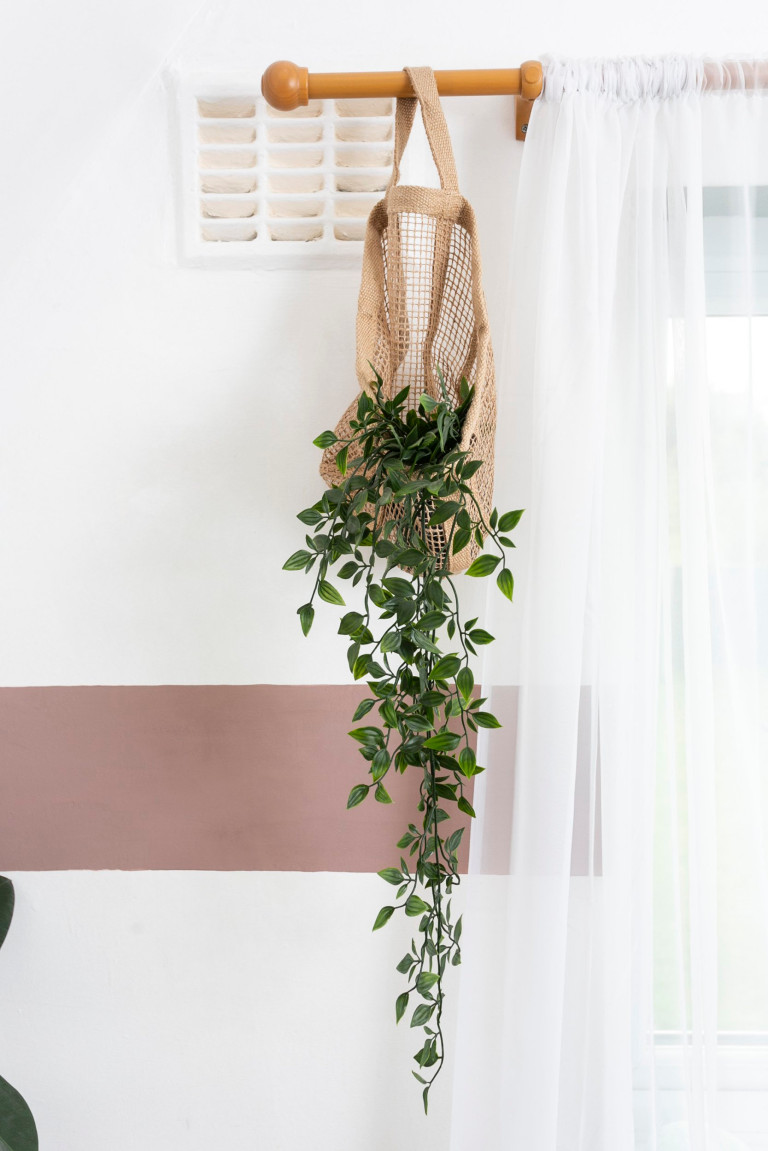 What I Rent: Jess, Wirral, Merseyside: plant hanging from curtain rail