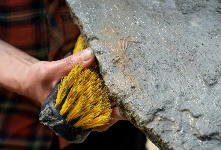 A paleontologist from the Natural History Museum cleans a slab containing an isocrinus fossil during a dig in a quarry in the north Cotswolds, where preserved echinoderms, sea lilies and echinoids, dating back to middle Jurassic period, have been found after the site was discovered by Neville and Sally Hollingworth.