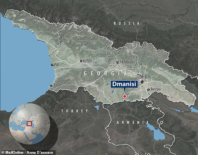 Experts led from the University of Florence analysed remains freshly collected from the Dmanisi archaeological site , which previously yielded several hominin skulls