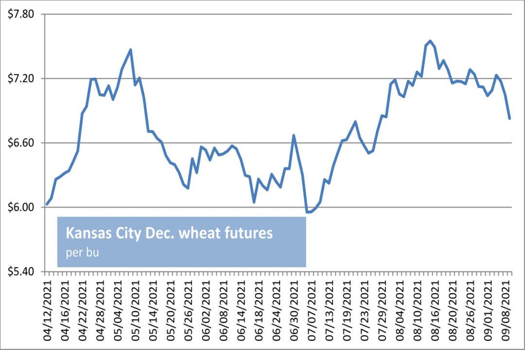 KC wheat futures chart