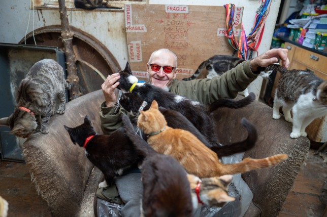 Ian Catmando of Gainsborough, Lincolnshire, at his home he shares with 70 cats