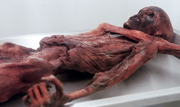 Ozti the Iceman's body
