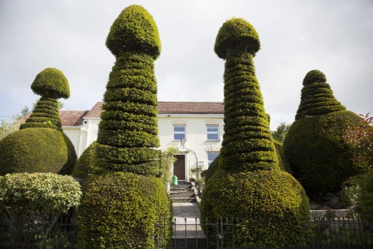 Home known as 'Willy House' due to phallic topiary garden goes on sale for £1m