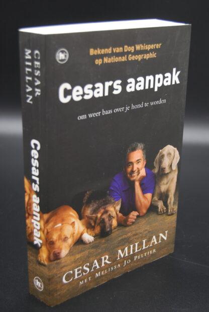 Hondenboek Cesars aanpak-Cesar Millan