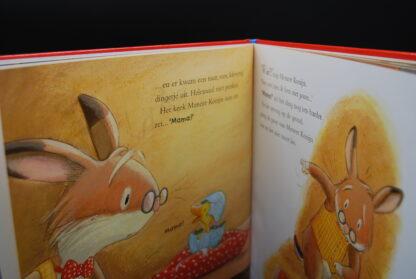 Voorleesboek voor peuters over een konijn en een eendje