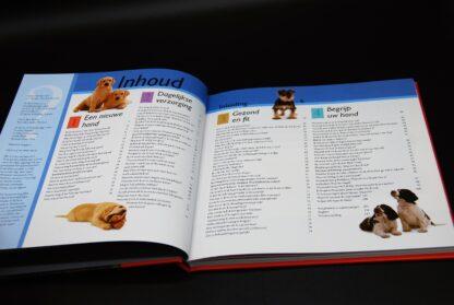 Hondenboek-101 vragen van uw hond-ISBN 9789089980656